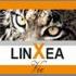 linxea-vie-70